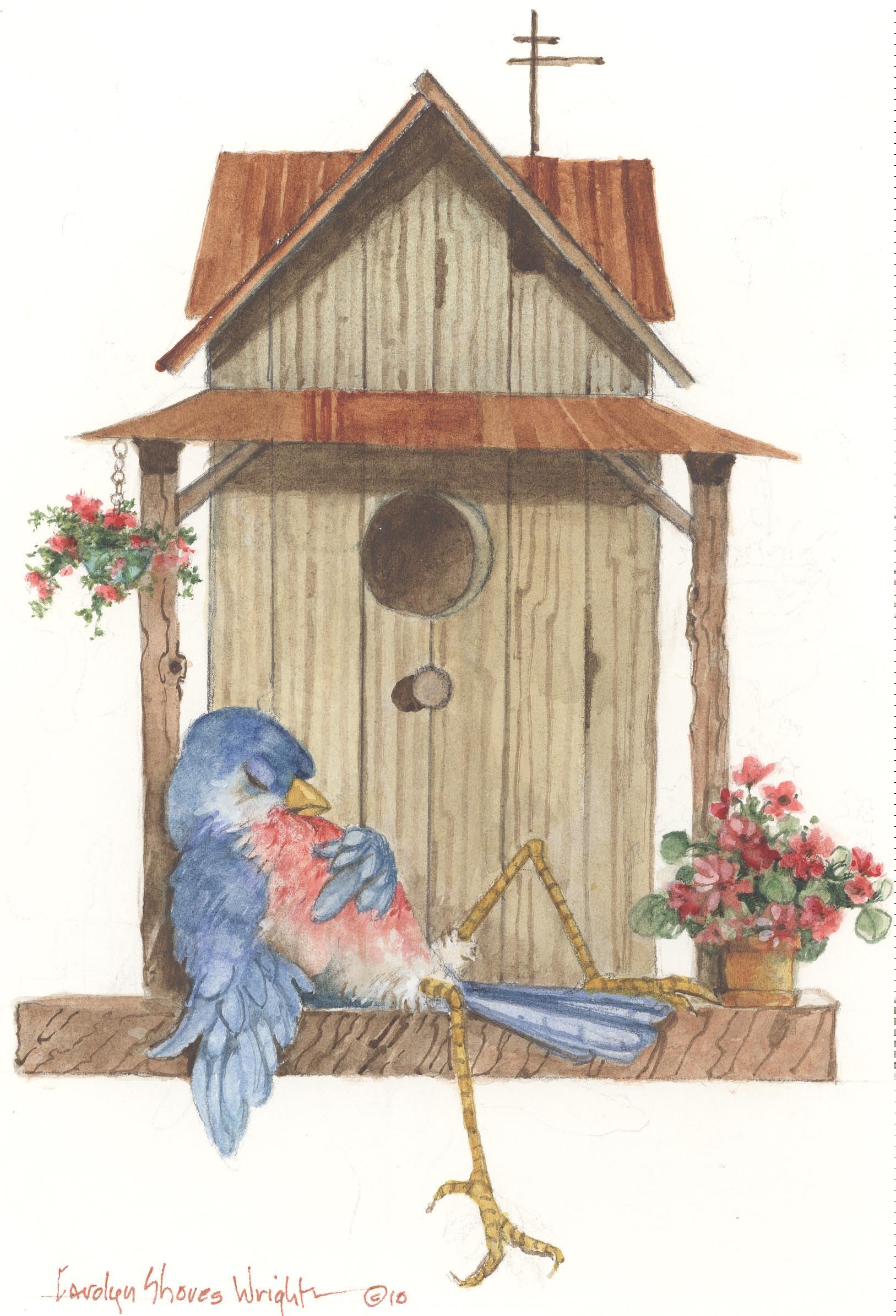 Bird Life | Carolyn Shores Wright